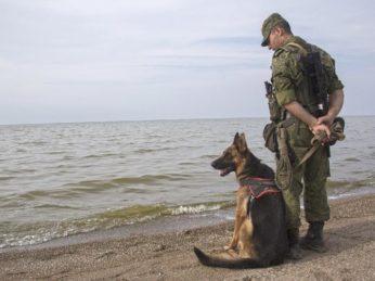 Управление ФСБ России по Ивановской области осуществляет набор граждан для прохождения военной службы по контракту в пограничных органах ФСБ России.