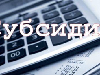 2 апреля 2020 года Правительством РФ внесены изменения в Правила предоставления субсидии на оплату жилого помещения и коммунальных услуг.