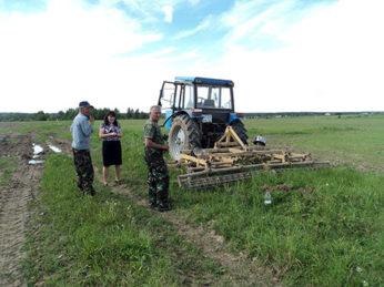 Аграрии Лухского муниципального района посеяли яровые культуры на площади 4988 гектаров, что превышает площади прошлого года на 19%.