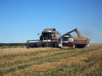 Уборочная кампания в районе близится к завершению. Труженики сельхозпредприятий убрали 83% площадей яровых зерновых культур.